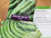 Planning Broad Bean Bonanza