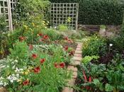 What Organic Gardening Start Garden
