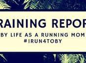 Training Report: #irun4toby Update