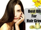 Most Effective Natural Oils That Help Your Hair Growth