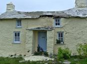 Treleddyd Fawr Cottage Lovely Welsh