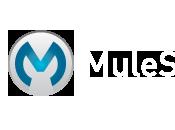 Mule HttpListener Example