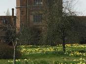 Spring Sissinghurst