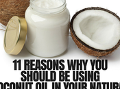 Using Coconut Your Natural Hair Care Routine No-Brainer