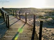 Postcards From Praia Labruge, Vila Conde