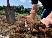 Remarkable Ways Conserve Protect Soil