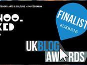 Blog Awards 2016 #UKBA16 Finalist Hookedblog