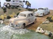 Outback Diorama Begins