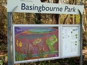 Basingbourne Park