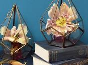 Product Styled Ways: Pentagon Brass Terrarium