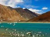 Ideal Yatra Ladakh