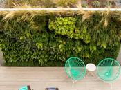 Wild Garden Leaps Walls This Backyard Build