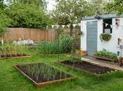 Peek Garden