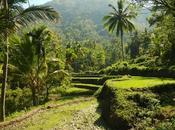 Kawa Bath Bugtong Bato Falls: Cool Rewards Climb Well Done
