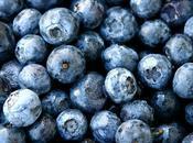 Blueberries Robert Frost..