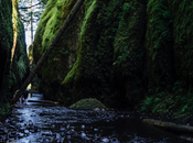 Summer Getting Hot? Cool Hiking Oneonta Gorge
