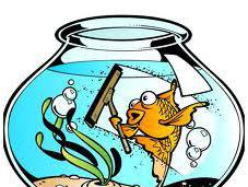 De-clutter Today Spring Clean Your Life! 2012 Mission Impossible Easy Breezy?