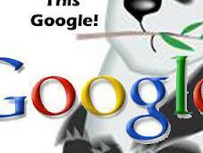 Panda Again Google!