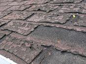 Signs Need Your Roof Replaced