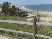 WALK DUNES: Cape Henlopen State Park, Delaware