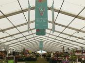 Hampton Court Flower Show 2016 Floral Marquee