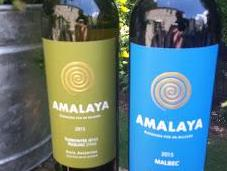 """Wines Altitude"" with Salta's Amalaya Wines"