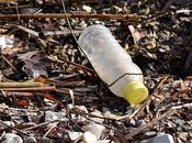 Unique Innovative Ways Reuse Your Garbage