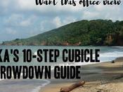 Should Cubicle Throwdown Like Did?