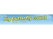 Butterfly Count 2016 #Competition