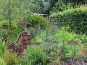 Update Front Garden
