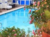 Important Issues When Considering Swimming Pool Installation