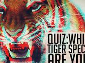 QUIZ: Which Tiger Species You?