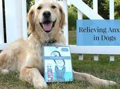 Calmz Anxiety Relief System Dogs