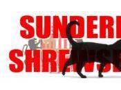 Sixer's Sevens: Yedlin Sunderland Shrewsbury. 'Corker from Januzaj'