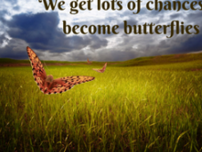 Survive Transition
