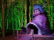 Build Fairytale Treehouse Kid's Room