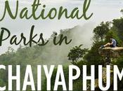 Four Beautiful National Parks Chaiyaphum