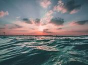 Causes Effects Ocean Dead Zones