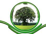 Stunning Ways Save Environment from Destruction