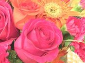 Sunday Bouquet: Brightest Pink Orange Blooms