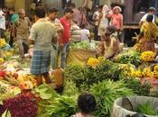 Malik Ghat Flower Market Kolkata: Truly Arresting Striking Experience