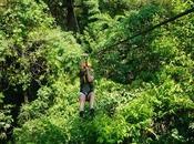 Thailand: Flight Gibbon