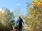 Should Hike With Your #Walktober