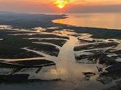 Wildfowl Wetlands Trust (WWT) Celebrates 70th Anniversary