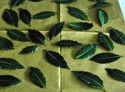 Preserve Leaves Easy Way!