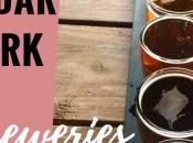 Breweries Cedar Park First Visit