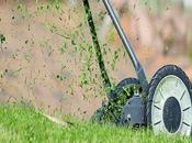 Green Thumb: Tips Making Your Grass Grow Greener