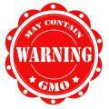 Government Regulators Approve Genetically Modified Corn from