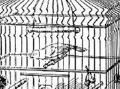 "Droppings from Catholic Birdcage: Celia Viggo Wexler Calls Kaine Embrace Label ""Cafeteria Catholic"" ""Jesus Cafeteria Jew"""