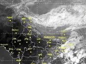 Cyclone Kyant Language More